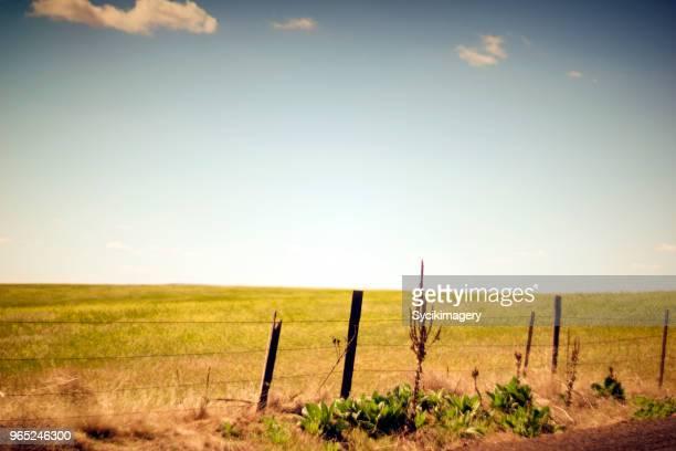 Simple rural scene
