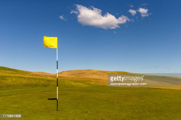 simplistic landscape - golf flag stock photos and pictures