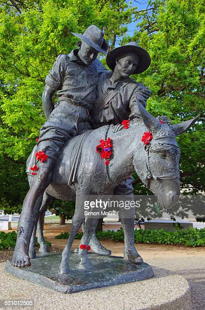 'Simpson and his donkey 1915' bronze sculpture by artist Peter Corlett outdoor exhibition area Australian War Memorial Canberra Australian Capital...