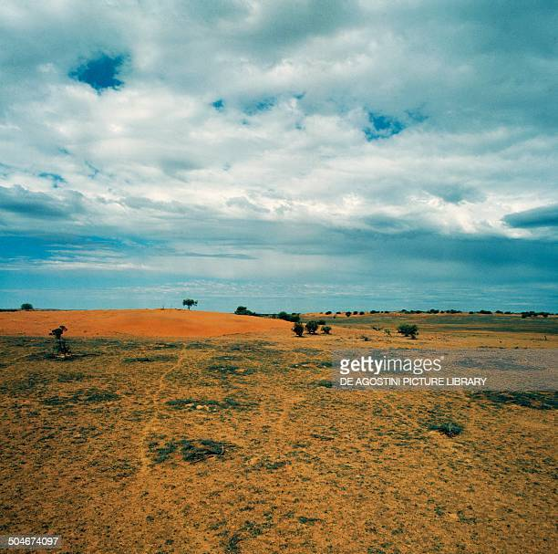 Simpson Desert Northern Territory Australia