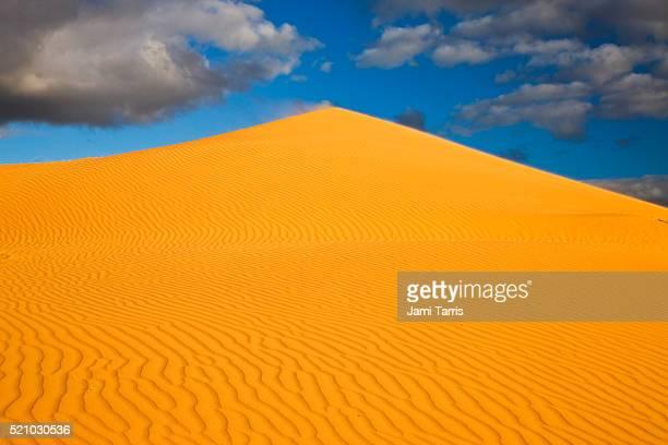 Simpson Desert's biggest sand dune, 'Big Red'