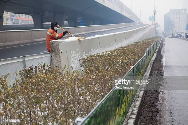A simulated green belt appears along the road on November 9 2015 in Changchun Jilin Province of China The cloth printed plants enclosed the withered...
