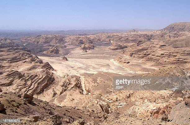 Sinai Egypt Desert Of The Sinai Peninsula In Egypt Region Of Magaza And Ain Khudra