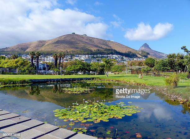 Sinal Hill and Lion's Head, Cape Town South Africa