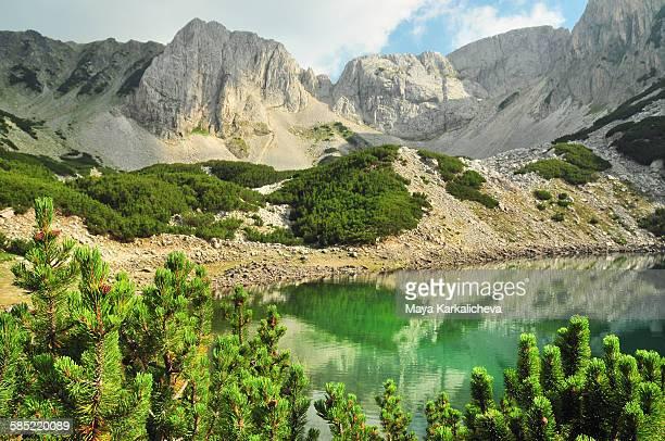 sinanitza lake, pirin mountain - pirin national park stock pictures, royalty-free photos & images