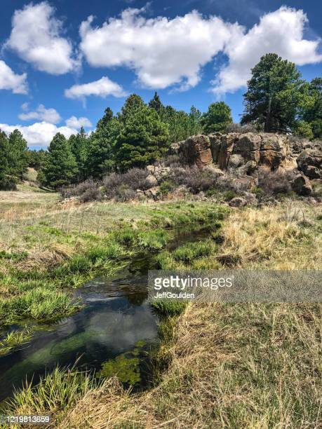 sinclair wash - jeff goulden stock pictures, royalty-free photos & images
