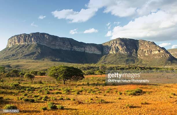 sincorá range - parco nazionale di chapada diamantina foto e immagini stock