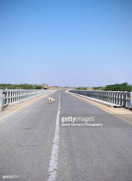 Sindh coastal highway