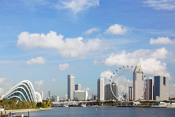 Singapore City Skyline With Flyer Wall Art