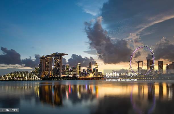 singapore cityscape - singapore botanic gardens stock photos and pictures
