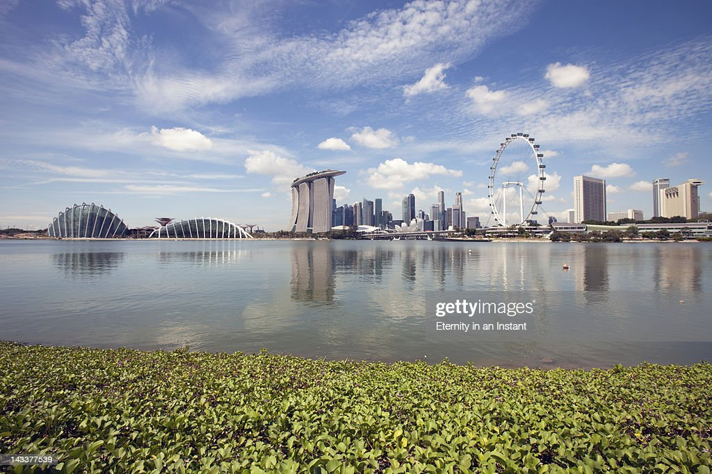 Singapore Cityscape with Singapore Flyer : Stockfoto