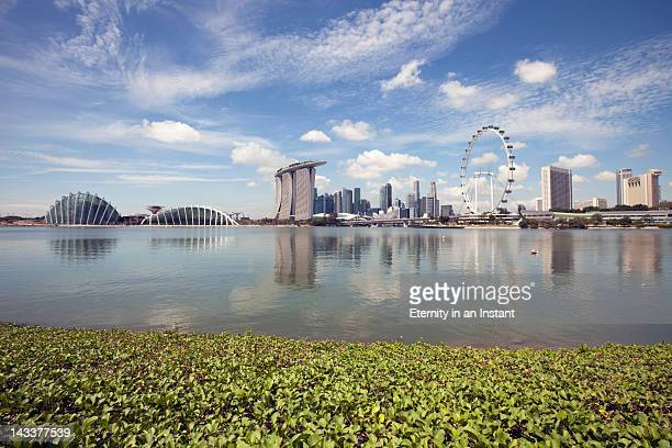 Singapore Cityscape with Singapore Flyer