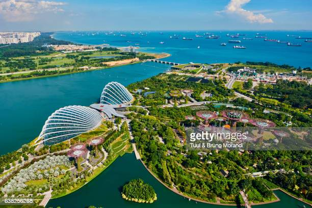 singapore, garden by the bay, supertree grove - singapore stock photos and pictures