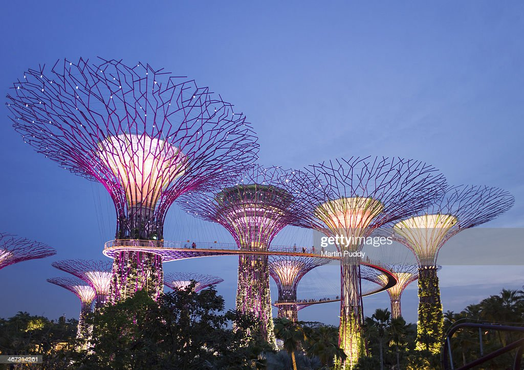Singapore, Gardens By The Bay, Super Tree Grove : Stock Photo