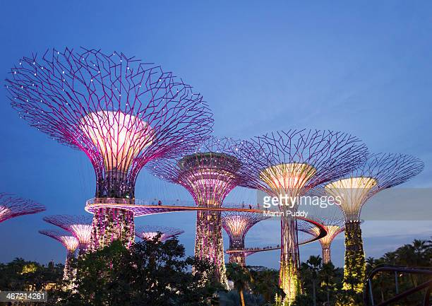 Singapore, Gardens By The Bay, Super Tree Grove