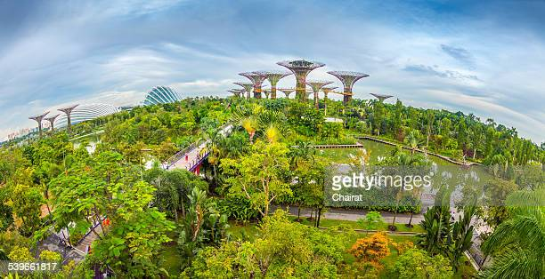 Singapore, Green World and city skyline