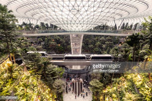 singapore, jewel changi airport - changi airport stock pictures, royalty-free photos & images