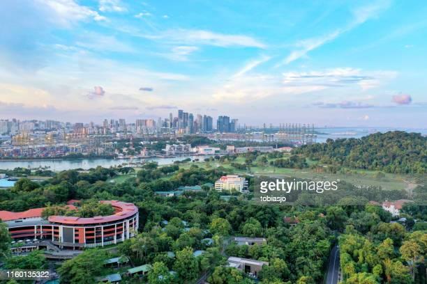 singapore landschap en stad - golfbaan green stockfoto's en -beelden