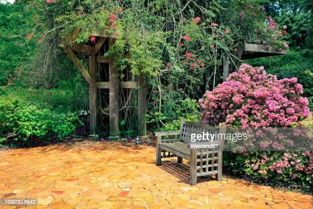 singapore, singapore botanic gardens - singapore botanic gardens stock photos and pictures