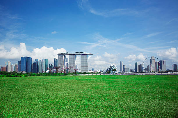 Singapore Skyline And Gardens By The Bay Wall Art