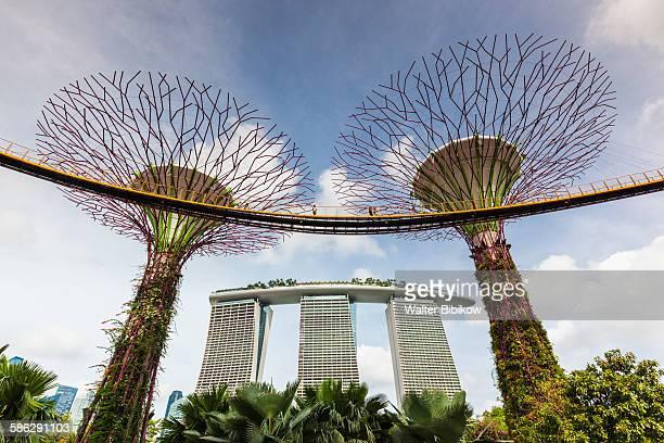 Singapore, Super Tree Grove, Exterior