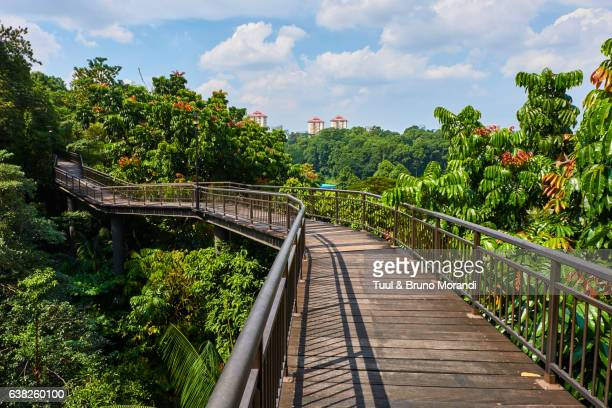 Singapore, walk on the Southern Ridges
