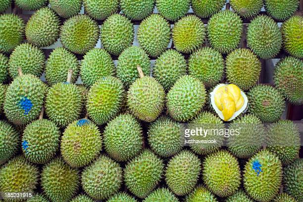 singaporean king of fruits durian - durian stock pictures, royalty-free photos & images