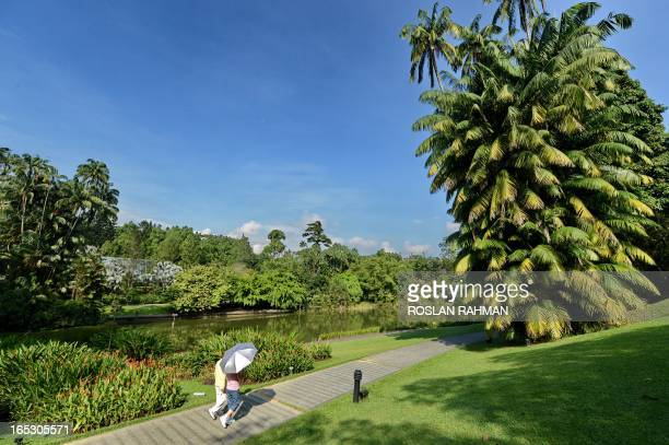 SingaporeenvironmentbotanyUNESCO by Bhavan Jaipragas A couple walks past the lake at the Botanical Garden in Singapore on April 2 2013 Singapore is...