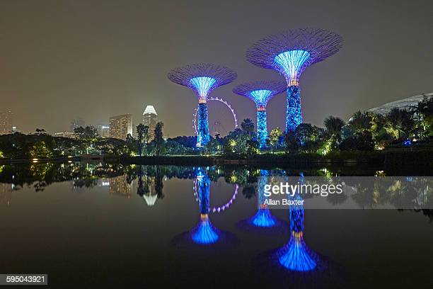 Singapore's Gardens by the Bay lit at nigh