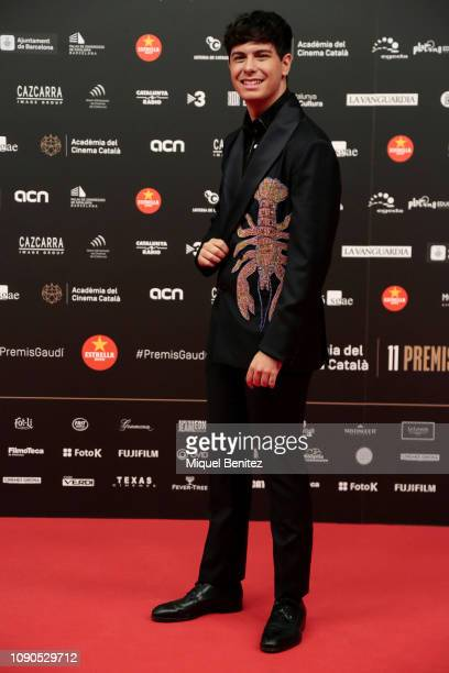 Singer Alfred Garcia attends the 11th Gaudi Cinematography Awards held at the Palau de Congressos of Catalonia on January 27 2019 in Barcelona Spain
