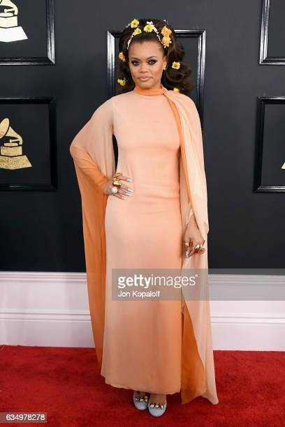Singer Andra Day attends The 59th GRAMMY Awards at STAPLES Center on February 12 2017 in Los Angeles California