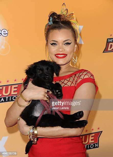 Singer Andra Day attends the All-Star Dog Rescue Celebration at Barker Hangar on November 21, 2015 in Santa Monica, California.