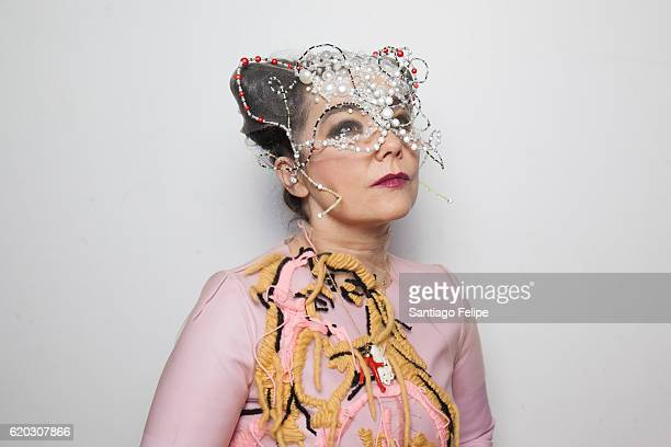 Singer Bjork poses for a portrait on October 26 2016 in Montreal Canada