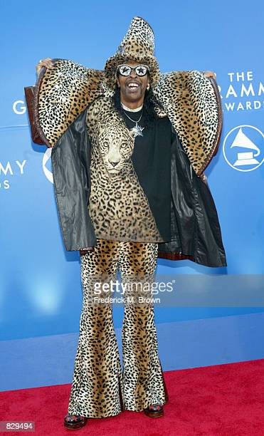 Singer Bootsy Collins attends the 44th Annual Grammy Awards at Staples Center February 27 2002 in Los Angeles CA