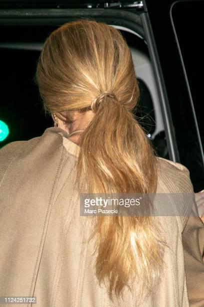 Singer Celine Dion hair detail is seen on January 23 2019 in Paris France
