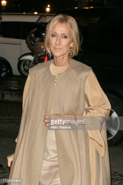 Singer Celine Dion is seen on January 23 2019 in Paris France