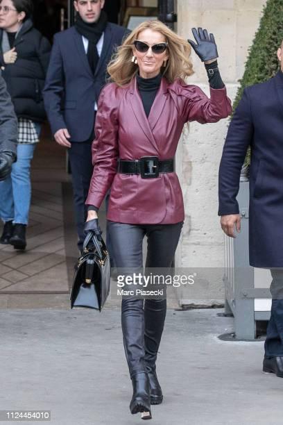 Singer Celine Dion is seen on January 24 2019 in Paris France