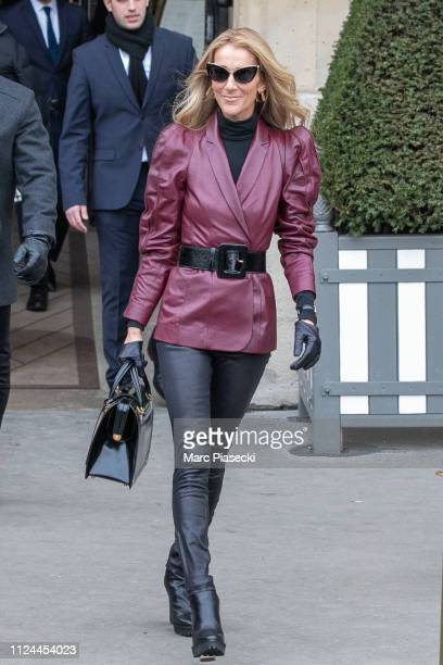 Singer Celine Dion is seen on January 24 2019 in Paris France