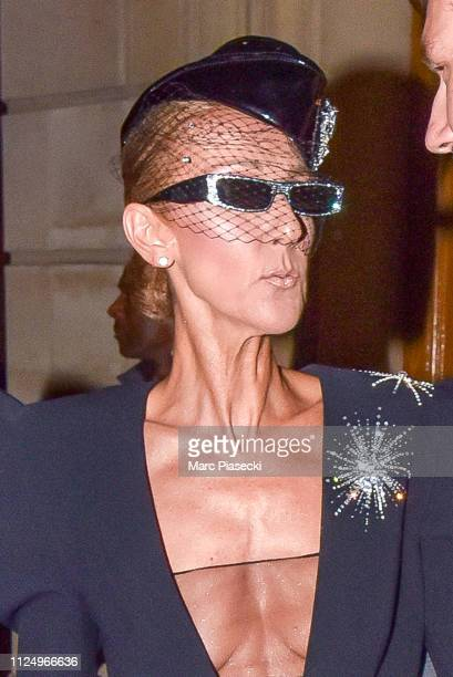 Singer Celine Dion is seen on January 25 2019 in Paris France