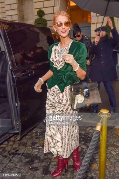 Singer Celine Dion is seen on January 25 2019 in Paris France