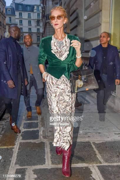 Singer Celine Dion is seen on January 25, 2019 in Paris, France.
