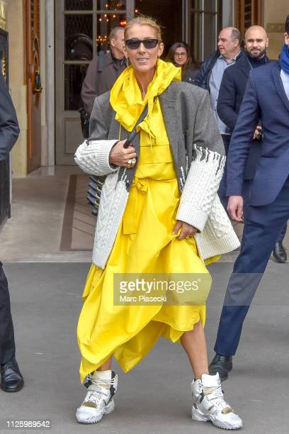 Singer Celine Dion is seen on January 29 2019 in Paris France