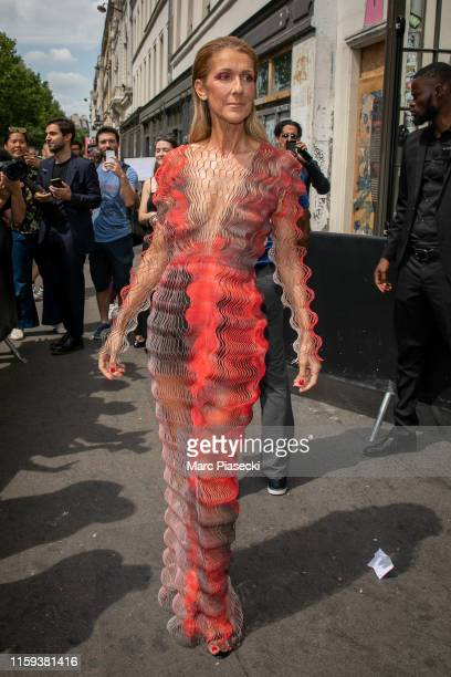 Singer Celine Dion is seen on July 01 2019 in Paris France