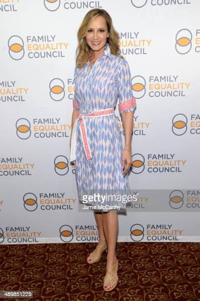 Singer Chely Wright attends the Family Equality Council's 2014 Night at the Pier at Pier 60 on May 12 2014 in New York City