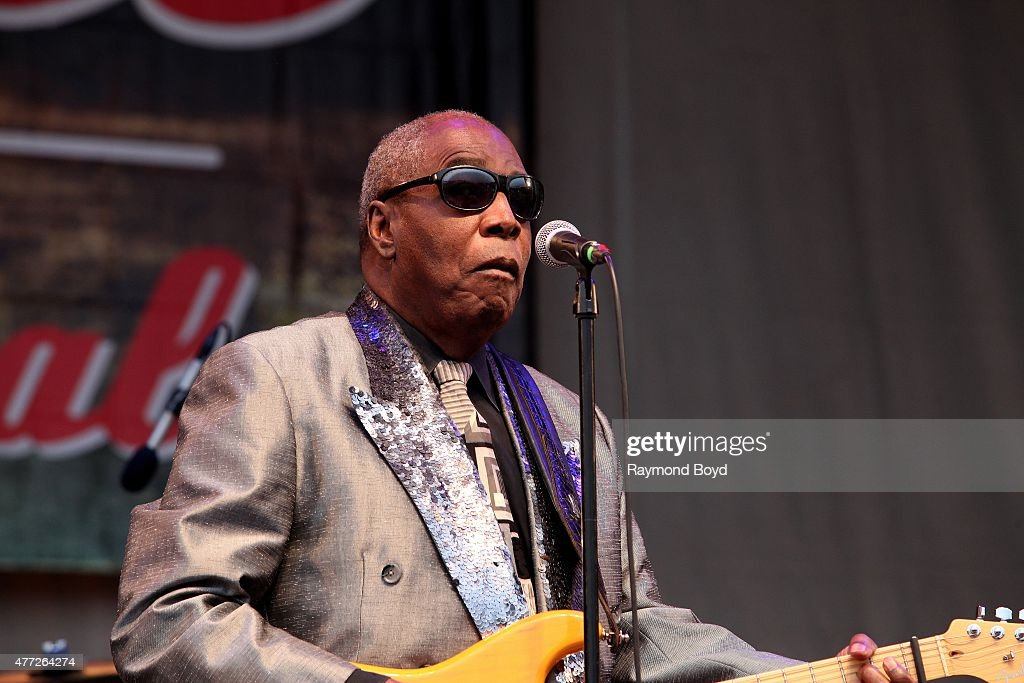 32nd Annual Chicago Blues Festival : News Photo