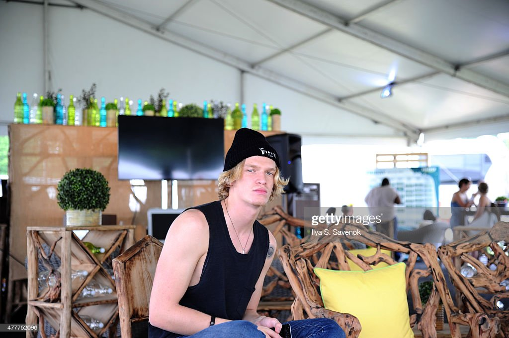 Firefly Music Festival 2015 - Day 2 : News Photo