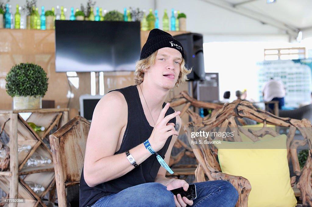 Firefly Music Festival 2015 - Day 2 : News Photo
