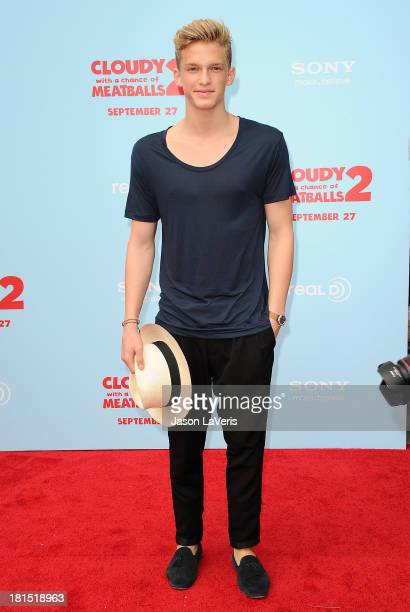 Singer Cody Simpson attends the premiere of 'Cloudy With a Chance of Meatballs 2' at Regency Village Theatre on September 21 2013 in Westwood...
