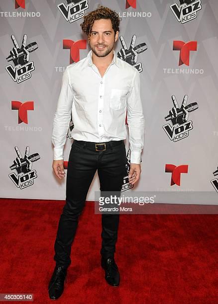 Singer David Bisbal attends La Voz Kids Grand Finale at Universal Orlando on June 7, 2014 in Orlando, Florida.