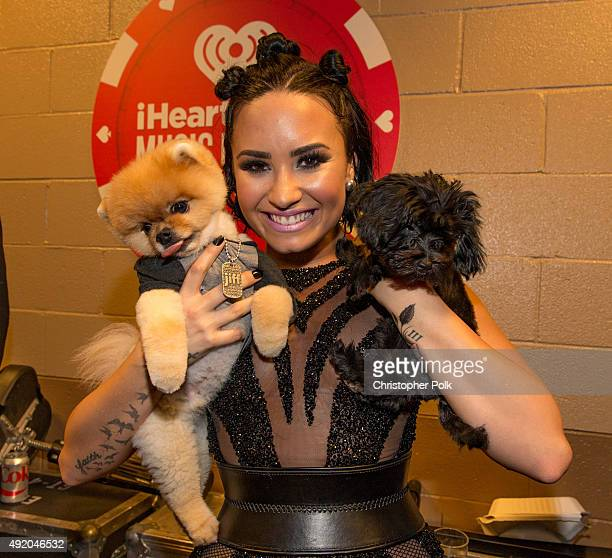 Singer Demi Lovato holding puppies is seen backstage at the 2015 iHeartRadio Music Festival at MGM Grand Garden Arena on September 18 2015 in Las...